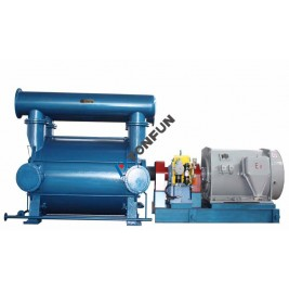 2BEP TYPE GAS DRAINAGE PUMP